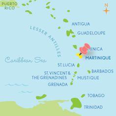 """Martinique F.W.I. / """"Indes Occidentales Françaises"""" / D.F.A. / Madinina / L'île au fleurs"""