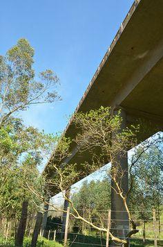 ponte Rio Uruguai - Palmitos SC e Iraí RS