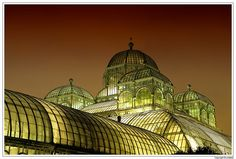 The Royal Greenhouses in Laken By Night