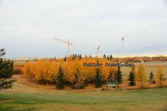 New Hospital Construction Site - Grande Prairie, Alberta, Canada   FollowPanda.Com