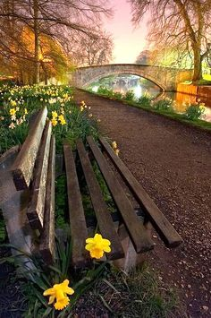 A quiet peaceful place to sit for a while ~ Cambridge - England