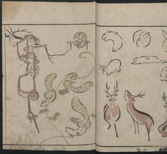 Masayoshi Kitao (1764-1824). Abbreviated drawing styles for birds and animals (Chōjū ryakuga shiki), 1797. Japanese Illustrated Books. The Metropolitan Museum of Art, New York. Rogers Fund, 1918 (b17940436) | An 18th century sketch of monkeys, squirrels, rabbits, and deer from an illustrated Japanese book. #Japan #animals