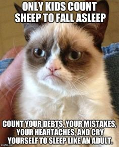 Grumpy cat. Only kids count sheep to fall asleep. Count your debts, mistakes, heartaches, and cry yourself to sleep like an adult.