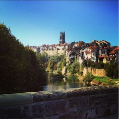 © le_re_nard #fribourgregion #fribourg #switzerland #oldtown #cathedral