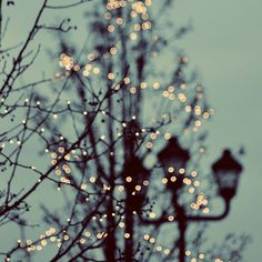 Winter Lights Art Print by Elle Moss Society6 ❤ liked on Polyvore