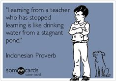 'Learning from a teacher who has stopped learning is like drinking water from a stagnant pond.'