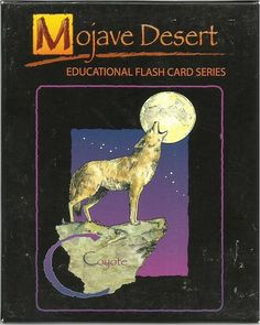Mojave Desert flora & fauna flash cards - artwork by local artist Sharon K. Schafer