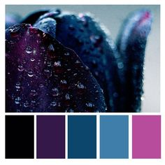 A mystical collection of deep colors and shades. Quite an intense color palette that will make a strong brand. Lila Palette, Dark Color Palette, Bedroom Colour Palette, Blue Colour Palette, Pastel Pallete, Purple Color Schemes, Color Schemes Colour Palettes, Purple Color Combinations, Blue Black Color