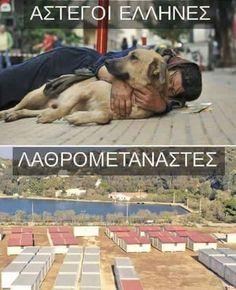 Murphy Law, Pretty Little, Philosophy, Greece, Politics, Animals, Sadness, Art, Animales