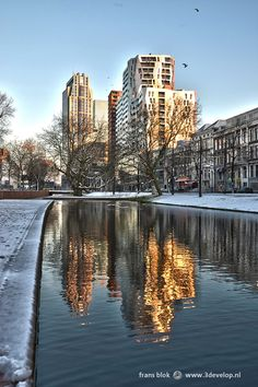 Westersingel on a winter day, in Rotterdam, The Netherlands