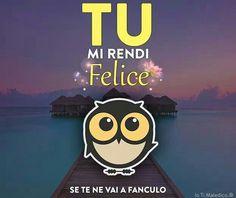 Vaffanculo# gufo# dediche# frasi#