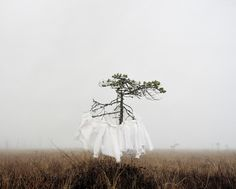 """farewell-kingdom: Finnish photographer Riitta Päiväläinen uses discarded clothing from second-hand shops and flea markets to carry silent, unknown stories and histories. By freezing the garment or letting the wind fill it with air, she is able to create a sculptural space, which reminds her of its former user. """"The unavoidable fact that I will never know the actual story and personal histories connected with the clothes arouses my curiosity. The clothes remain silent, withholding the"""