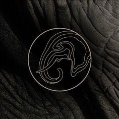 Leonardo DiCaprio Foundation reveals playful branding for wildlife funds