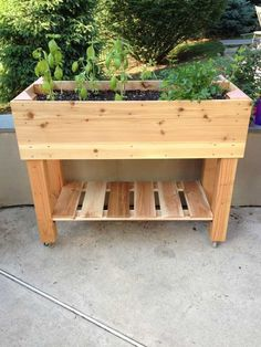 55 Favorite Garden Boxes Raised Design Ideas There are a whole lot of reasons Diy Pallet Projects, Garden Projects, Raised Planter Boxes, Wooden Planters, Herb Planters, Pallets Garden, Garden Boxes, Raised Garden Beds, Backyard Landscaping