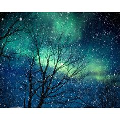Aurora Borealis winter photography northern lights blue green starry... ❤ liked on Polyvore