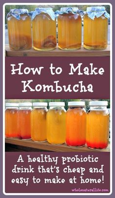 Kombucha is a probiotic drink that's a great addition to a healthy diet. It's cheap and easy to make your own kombucha at home--learn how today! Yummy Drinks, Healthy Drinks, Healthy Eating, Make Your Own Kombucha, Making Kombucha, Kombucha Recipe, Kombucha Tea, Real Food Recipes, Healthy Recipes