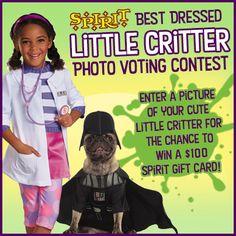 World's Halloween Costume Store Pet Costumes, Halloween Costumes, Spirit Gifts, Little Critter, Halloween Accessories, Heart For Kids, Spirit Halloween, Pictures Of You, Big Kids