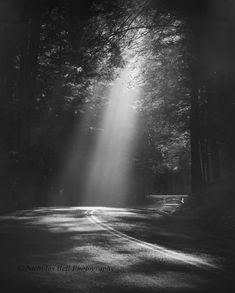 Black and white photography Such a beautiful photo. Image Photography, Amazing Photography, Landscape Photography, Nature Photography, Black And White Landscape, Black And White Pictures, Dark Landscape, Pretty Pictures, Cool Photos