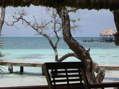 Dangriga, Belize: From the bar to the Palapa