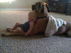 Momentky čo dojímajú: Nech sa deje čokoľvek, psík je verný kamarát! - Najmama.sk