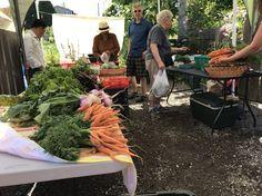 Garden Farm, Market Garden, Farm Gardens, Seattle News, West Seattle, High Point Market, Farm Stand, Fresh, Activities