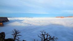 Temperature Inversion Causes the Grand Canyon to Flood with Clouds