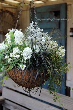 Container Flowers, Container Plants, Container Gardening, Garden Junk, Garden Boxes, Hanging Flower Baskets, Hanging Plants, Floating Garden, Flower Boutique