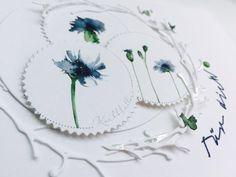 kornblumen(blau)