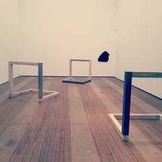 Figure 2. Anya Gallacio at Lehmann Maupin, installation view. Lower East Side. Spring 2015.