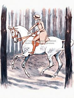 Horse Greeting Card Girl Rides White Horse by KatyDidsCards, $2.99