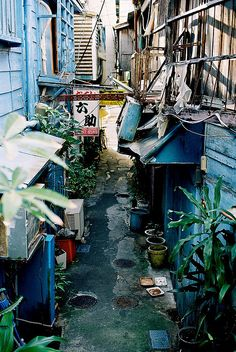Okinawa-our next destination