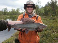 #Kielajoki #Harjus #Fishing #Grayling #Kalastus
