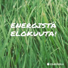 Energistä elokuuta! #hyväasenne #positiivisuus Learn From Your Mistakes, Lds Quotes, Always Learning, Hashtags, Forgiveness, Motivationalquotes, Quotes To Live By, Believe, Sayings