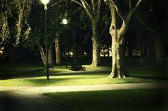 photos of night gardens | park_at_night1_sm