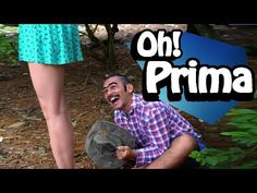 OH! PRIMA - YouTube Tv Direct, When Life Gets Hard, Intimate Photography, Videos, Youtube, Saints, Jokes, School, Movies