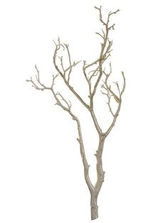 Beautiful manzanita branch in pearl coloring will make a decorative centerpiece for your beach wedding or destination wedding. Dress up with crystals and jewels, silk flowers, and more for a tall and