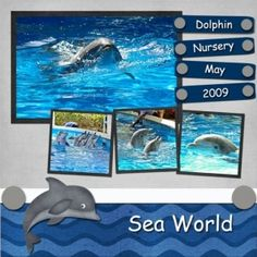 Love the Dolphin! #Scrapbook ideas by polly   #Scrapbooking #page #layout  - Come visit us in Oklahoma! scrapnparadise.webs.com