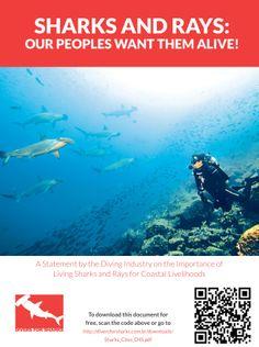 Baixe gratuitamente o manifesto Divers for Sharks aqui neste endereço ou escaneie o código da imagem: http://diversforsharks.com.br/downloads/Sharks_Cites_D4S.pdf