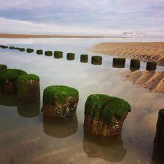 West Vlaanderen, Breskens #zeeland #westvlaanderen #kust #breskens