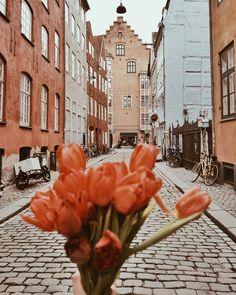 Copenhagen streets and tulips! Magstræde, Copenhagen
