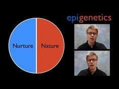 Epigenetics -  Most concise, clear explanation of epigenetics, DNA, RNA, and how the same stem cell can make lip cells or eye cells.