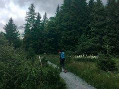 Randonnée dans les Alpes : 3 jours en montagne pour se dépasser Fitness Motivation, Country Roads, Alps, Mountain, Travel, Landscape, Fit Motivation, Exercise Motivation