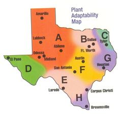 how to plan landscaping in Texas! Texas Gardening, Gardening Zones, Organic Gardening, Tropical Landscaping, Landscaping Plants, Texas Plants, Garden Quotes, Drought Tolerant Plants, Desert Plants