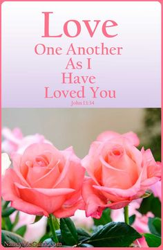 """Bible Verse John 13:34 """"Love One Another  As I Have Loved You."""" NancyMcGuirk.com"""
