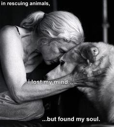 very moving picture
