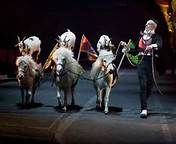 circus pictures - Bing Images