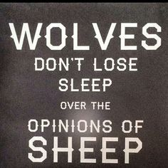 Wolves don't loose sleep over the opinions of sheep