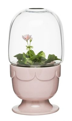 Sagaform Greenhouse op voet - Pelargonia Pink