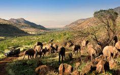 Kwa Maritane Bush Lodge, Pilanesberg Game Reserve, South Africa