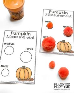 Pumpkin Measurement: Size Comparison. - Kindergarten Morning Tubs